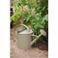 Watering Can - Gooseberry