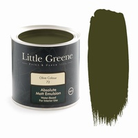Little Greene Paint - Olive Colour (72)